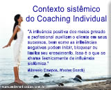 Contexto sistêmico do Coaching Individual - O cliente como parte de um sistema