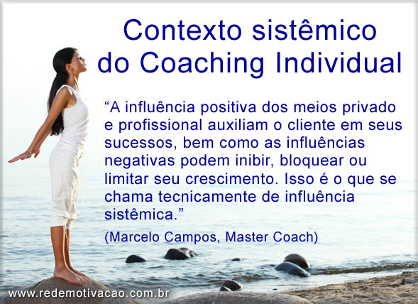 Contexto sistêmico do Coaching Individual