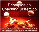 Princípios do Coaching Sistêmico baseado em Bernd Isert