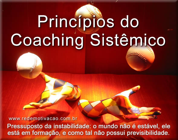 fundamentos e principios do coaching sistêmico