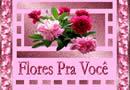 Todas as flores do mundo são para ti, mamãe querida, nesse teu dia, receba rosas e dálias