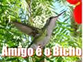 Vídeo Mensagem carinhosa :: Meu Amigo é o Bicho!