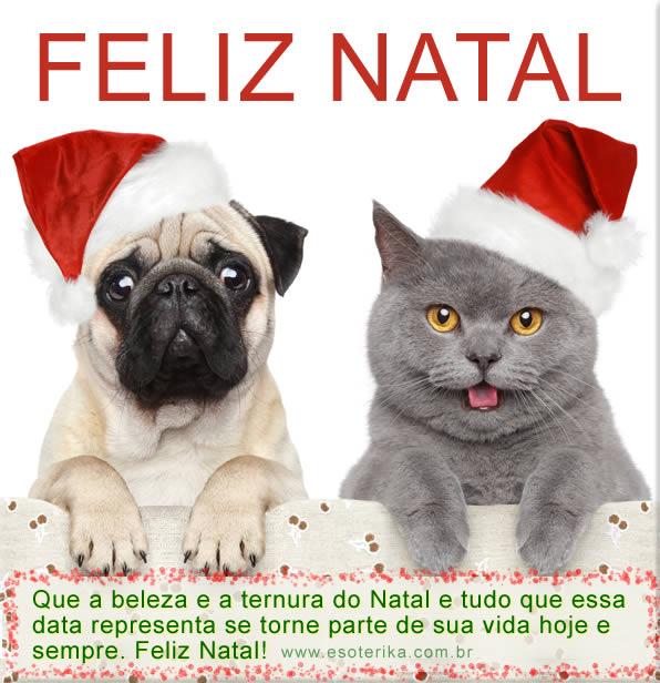 Mensagem De Feliz Natal Amor Amigos E Familiares