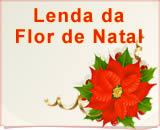 Lenda da Flor de Natal - Poinsétia